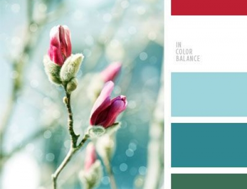 Color Palettes: der Frühlingsquicky – Farbinspiration im Mai