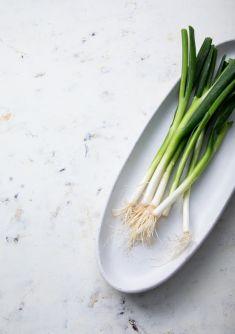Foodstyling Foodstill Lauchzwiebel